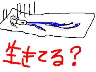 snap_bajiko_2011105165136.jpg