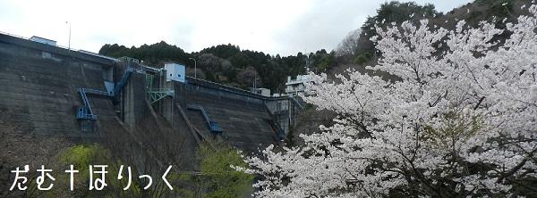 11花貫ダム