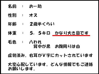 11_1123_4.jpg