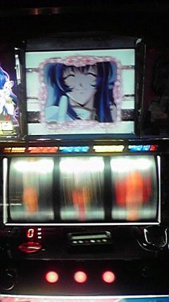 ナデシコ 桜5