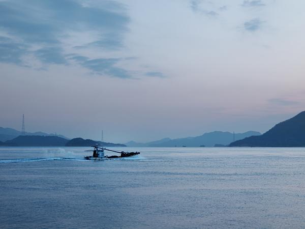 めばる港の漁船