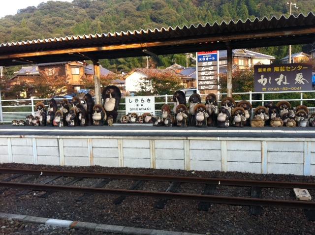 駅のホームに大量の狸