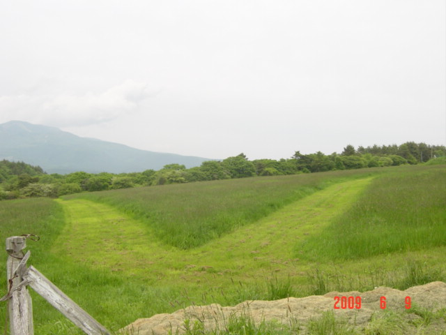牧草内コース