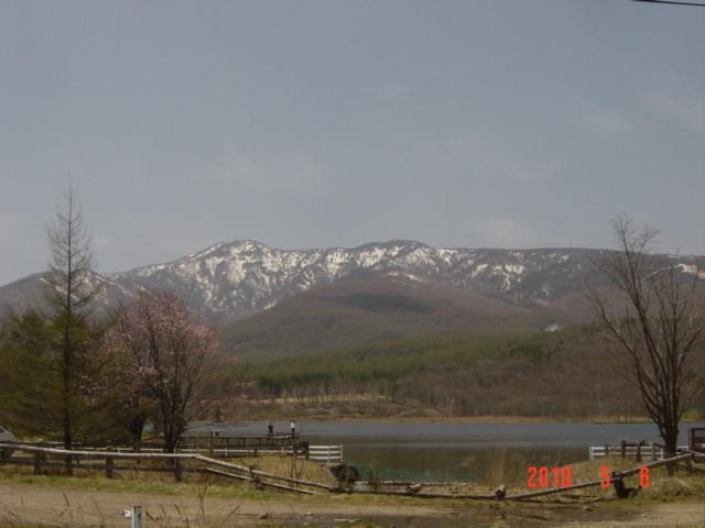 春のバラギ高原