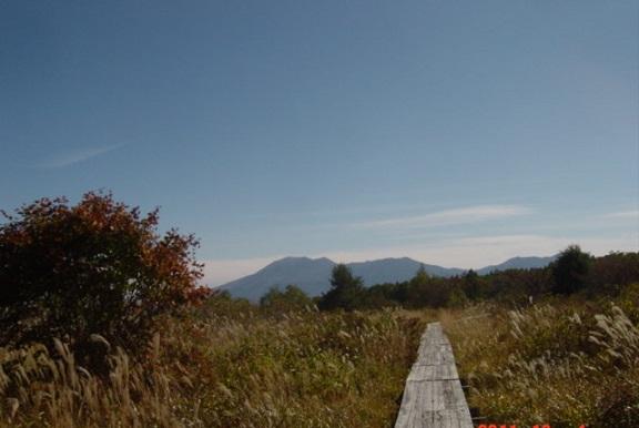 野地平の木道