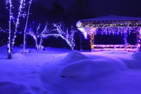 新雪いるみ_800