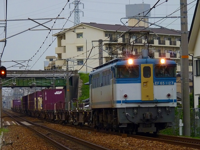 P1160618.jpg