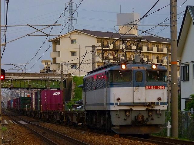 P1160647.jpg