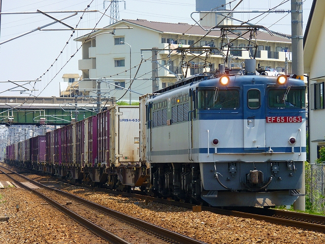 P1160663.jpg