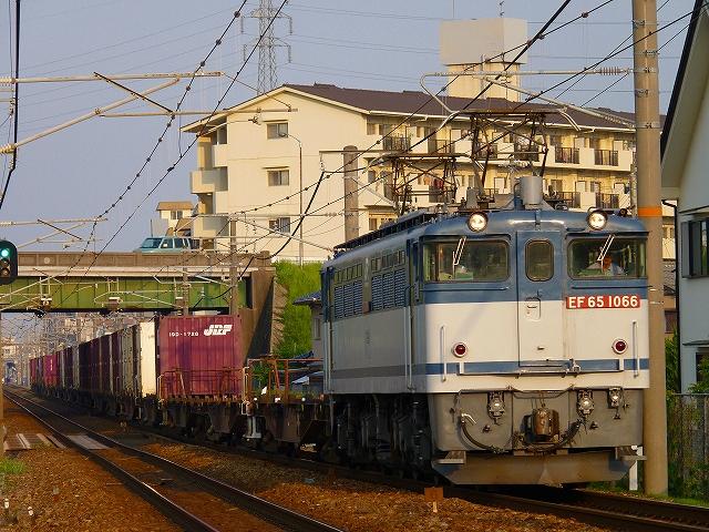 P1160666.jpg