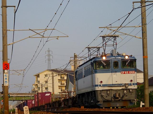 P1160673.jpg