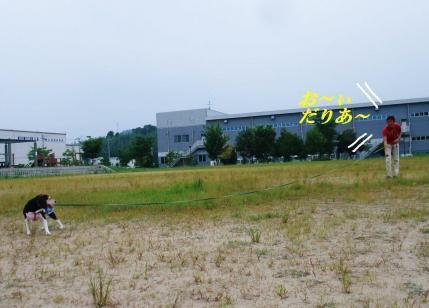 コピー ~ DSCF9963