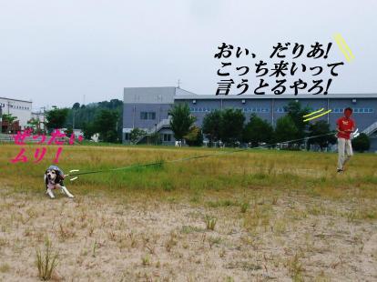 コピー ~ DSCF9962