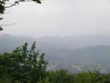 僕と猫と山と緑な日々