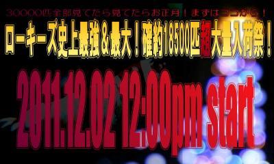 Xmas011_convert_20111201192433.jpg