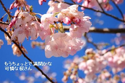 s-IMG_3876.jpg