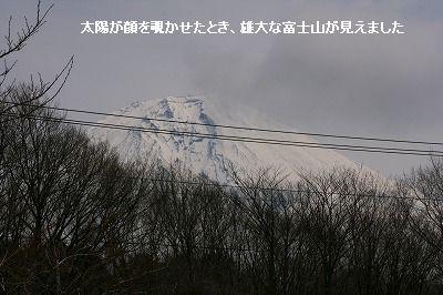 s-IMG_4003.jpg