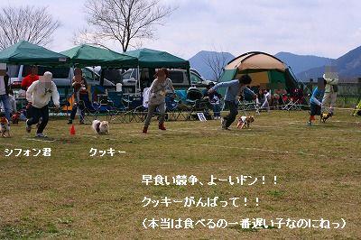 s-IMG_4006.jpg