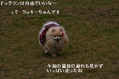 s-IMG_4127.jpg