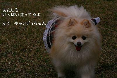 s-IMG_4148.jpg