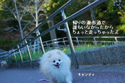 s-IMG_6126.jpg