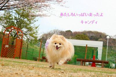 s-IMG_6892.jpg