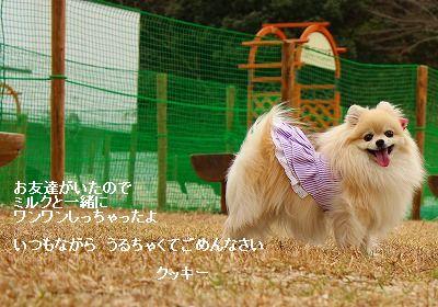 s-IMG_6969-2.jpg