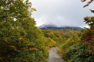 紅葉と八甲田山
