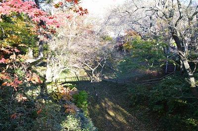 橋から見た堀