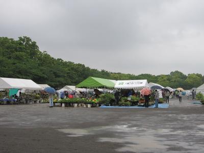 20100525花緑フェア01(再作成)