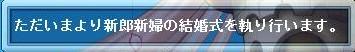 Maple120109_221813.jpg