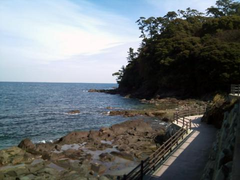 真鶴の漁港近く