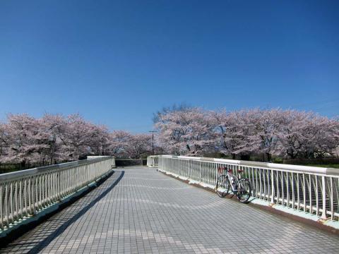 残堀川の橋