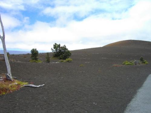 2010Hawaii81