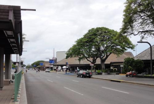 2010Hawaii6