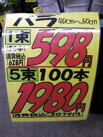 iphone_20120126180033.jpg