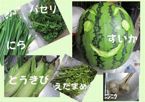 yasai_20110908195215.jpg