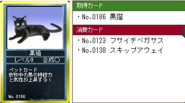 LV5,6黒猫