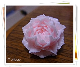 RIMG0846-crop.jpg