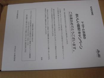 DSC03145.jpg