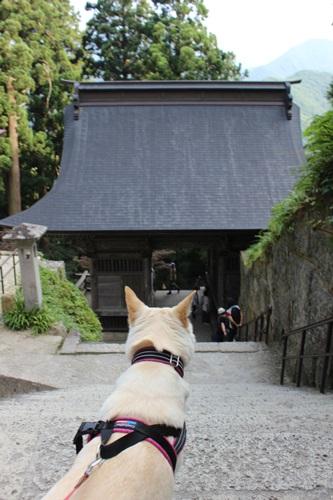 IMG_6209山寺