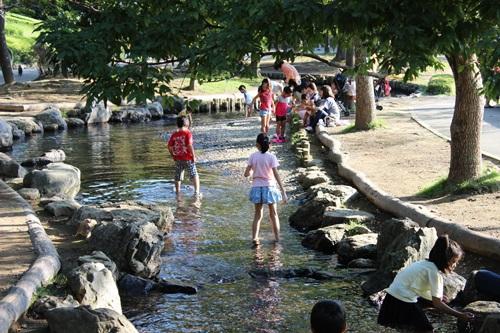 IMG_6845丸山公園