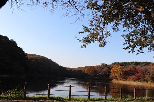 IMG_8199八丁湖
