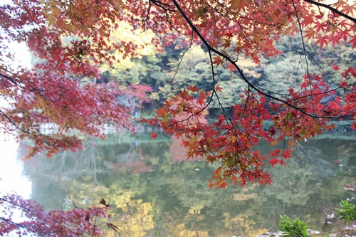 IMG_8226八丁湖