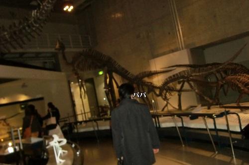 039恐竜