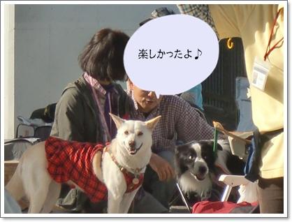 CIMG7304.jpg