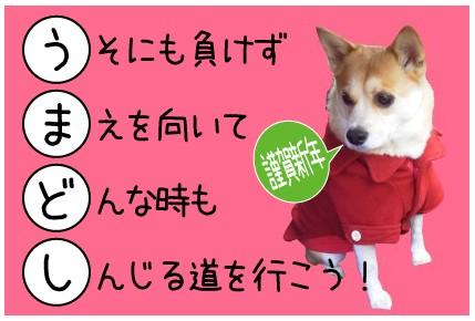 2014-01-01a.jpg