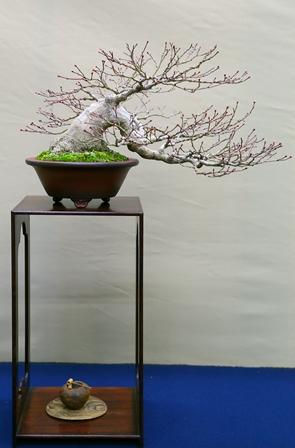 2011-10-08 華2454