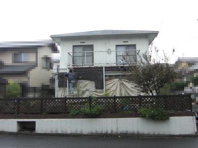 20110120004.jpg