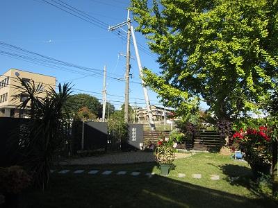 20111105011.jpg